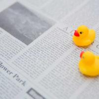 子供新聞って「お試し」はできるの?中学受験生に人気の小学生新聞を無料で読んでみる!